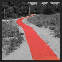 redcarpet_210-210